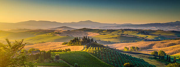 scenic tuscany landscape panorama at sunrise, val d'orcia, italy - italy stock photos and pictures