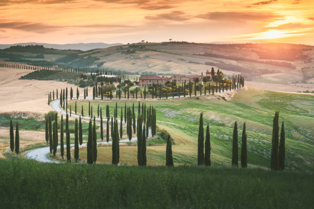 Scenic Tuscany landscape with rolling hills and valleys in golden morning light San Casciano dei Bagni in Val d'Orcia, Italy stock photo
