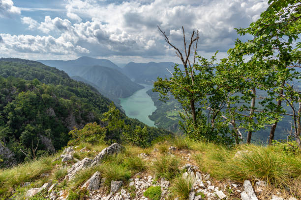 scenic view from  banjska stena in tara national parkland - serbia stock photos and pictures