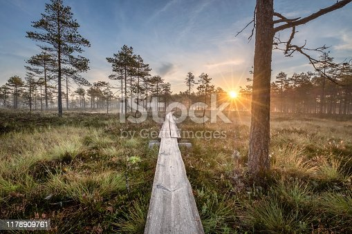 Scenic view from swamp with wooden path and beautiful sunrise at autumn morning in Finland