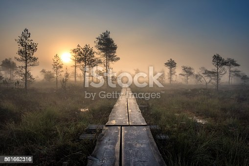 istock Scenic view from swamp with wooden path at autumn morning in Torronsuo National park, Finland 861662316
