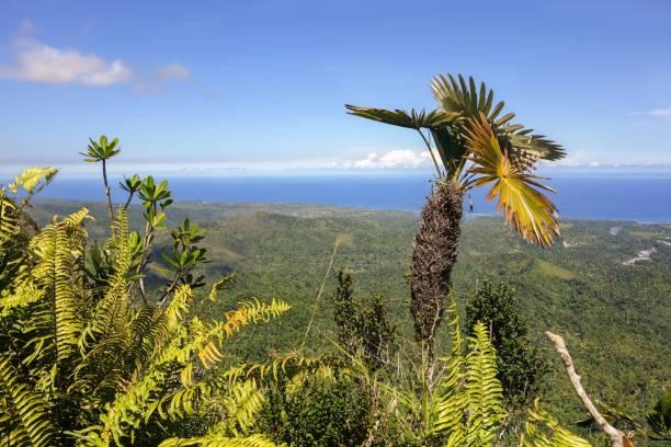 Scenic View from top of El Yunque Mountain above Baracoa Bay Cuba Atlantic Ocean stock photo