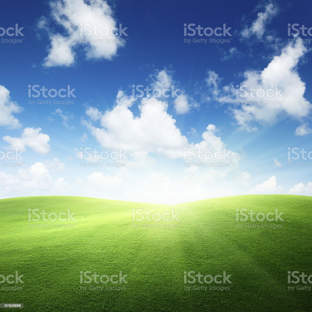 Scenic view of a field with green grass and blue cloudy sky royalty-free stock photo