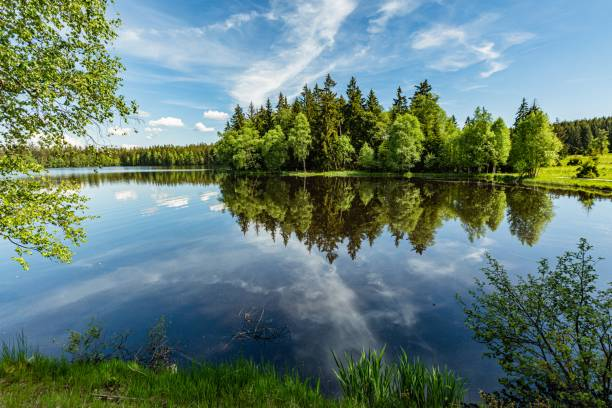 Scenic view of a Kladska lake in the Czech Republic A lake close to Marianske Lazne surrounded with forest. Sunny summer landscape with blue sky and white clouds and reflection in water. taiga stock pictures, royalty-free photos & images