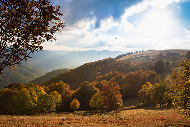 Scenic view of Alsace hills - foto stock