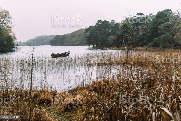 Scenic View Of Boat In Lake In Killarney A Misty Day — стоковые фотографии и другие картинки Без людей