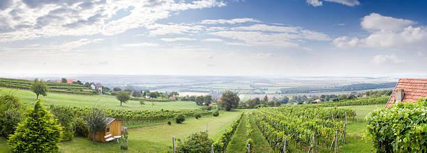 panoramablick von burgenland - burgenland stock-fotos und bilder