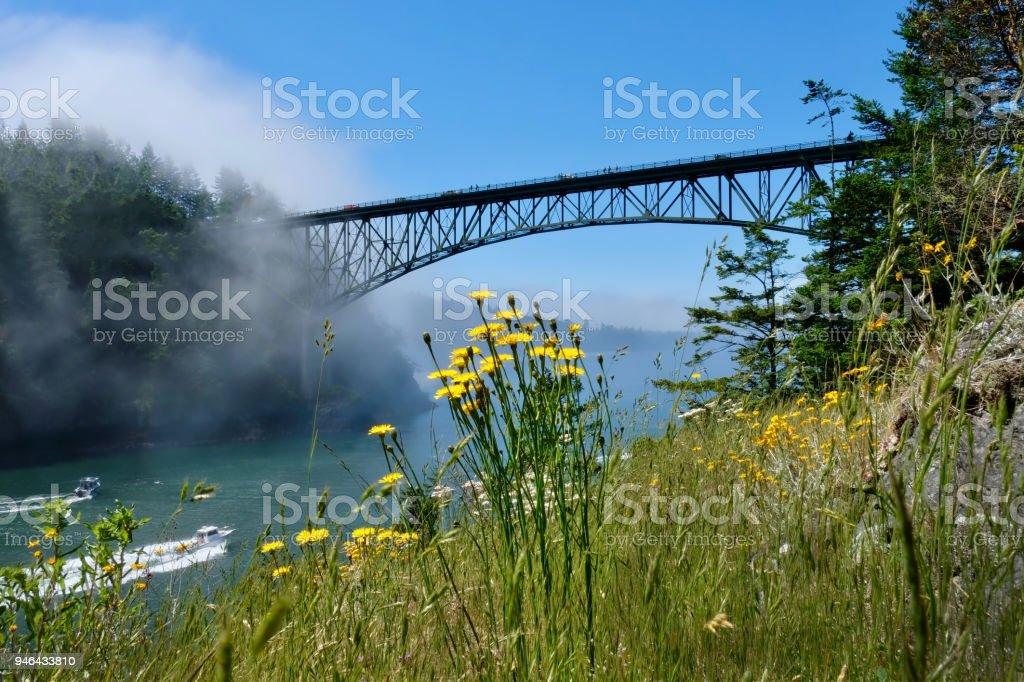 Malerische Aussicht auf Deception Pass Bridge in Sommertag mit Nebel und Wildflowes auf Felsen. – Foto