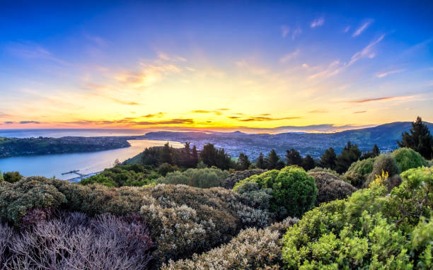 Scenic view of Dunedin City, New Zealand stock photo