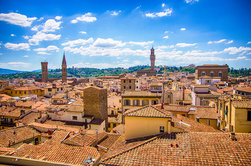 Scenic view of Florence old town and historical houses