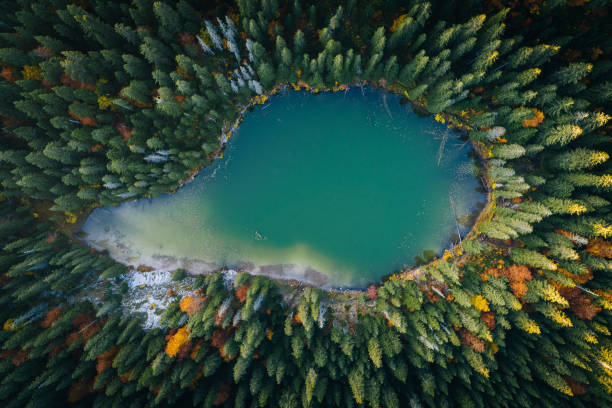 Scenic view of forest and lake from aerial perspective stock photo