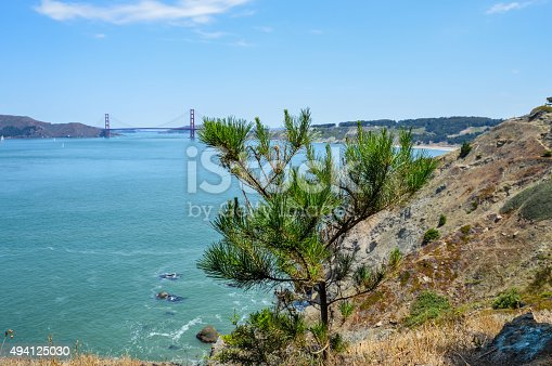 istock Scenic view of Golden Gate Bridge from Lands End Trail 494125030