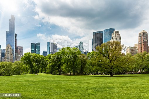 Scenic view of grassy landscape at Central Park in NYC, USA