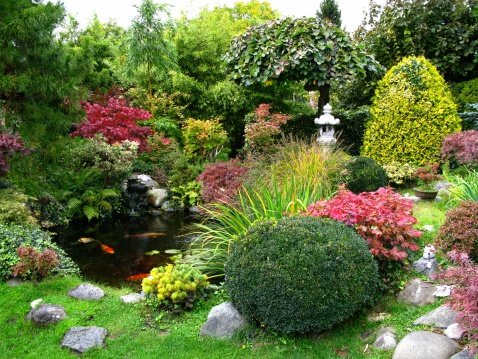 Scenic view of Japanese garden with koi-pond