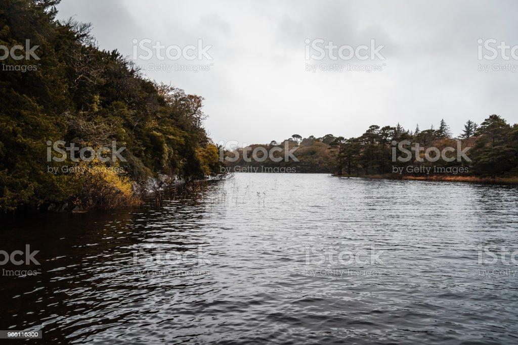 Herrliche Sicht auf See in Killarney ein Nebliger Tag - Lizenzfrei Baum Stock-Foto