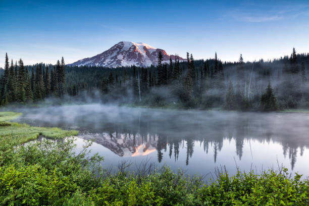 Scenic view of Mount Rainier reflected across the reflection lakes Scenic view of Mount Rainier reflected across the reflection lakes at sunrise mt rainier stock pictures, royalty-free photos & images