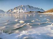 Scenic view of seaside in winter on Lofoten island