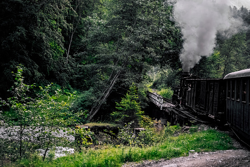 A scenic view of a steam locomotive crossing a bridge through the lush green forest with diminishing perpecting of the railway.