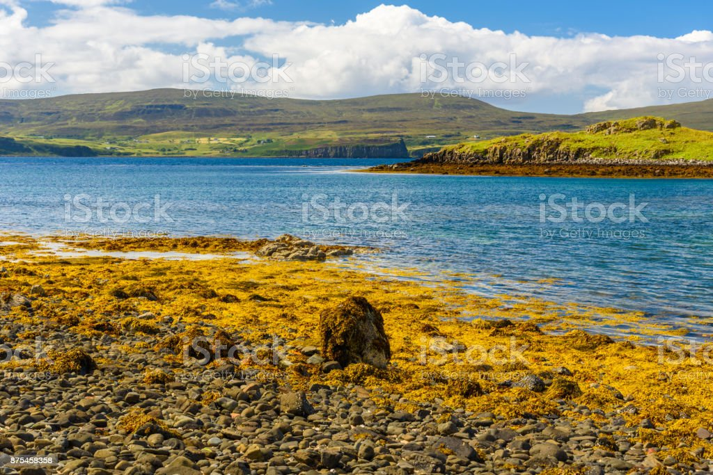 Scenic view of the Coral Beaches in Scotland stock photo