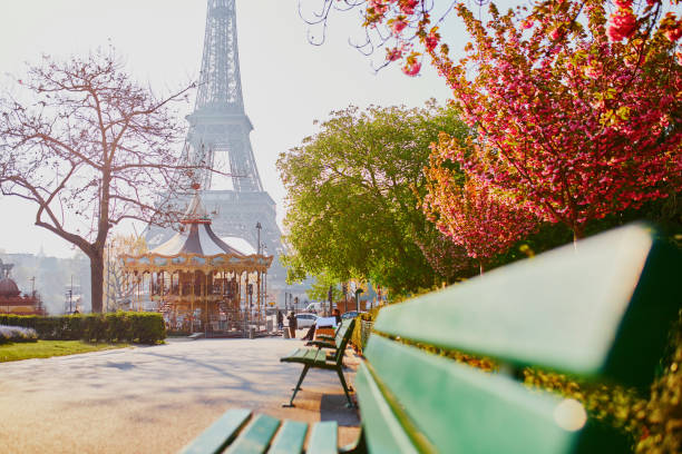Scenic view of the Eiffel tower with cherry blossom stock photo