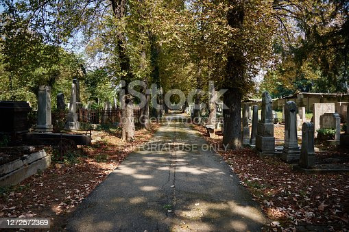 Ploiesti, Romania - August 18, 2018: A scenic view of the only Jewish cemetery in Ploiesti city on a sunny autumn day.