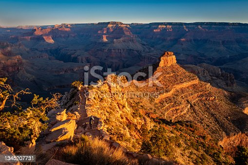 istock Scenic view of the South Rim of the Grand Canyon from the kaibab trail 1345207731