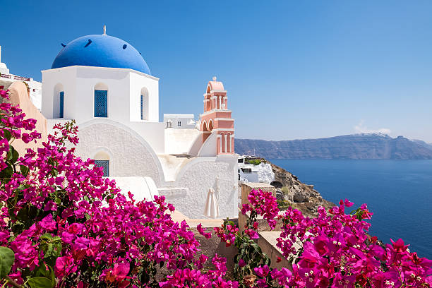 scenic view of traditional cycladic houses with flowers in foreg - griekenland stockfoto's en -beelden