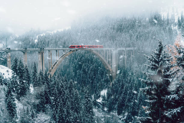 Scenic view of train on viaduct in Switzerland Scenic view of train on viaduct in Switzerland forest in winter switzerland stock pictures, royalty-free photos & images
