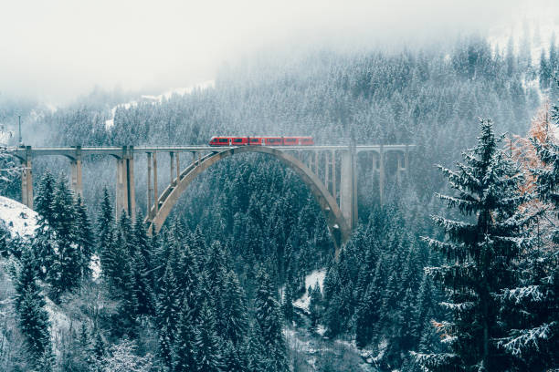 scenic view of train on viaduct in switzerland - train stock photos and pictures