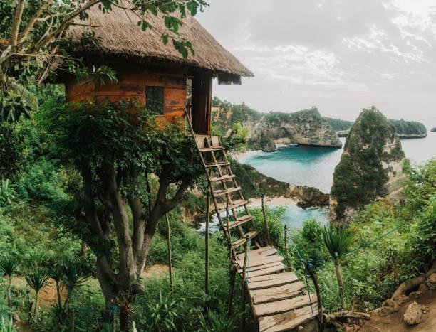 Scenic view of tree house near the sea on Nusa Penida stock photo