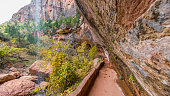 Amazing red cliffs. EMERALD POOLS TRAIL, Zion National Park, Utah, USA