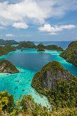 istock Scenic view of Wayag island in Rajaampat Indonesia 459105835