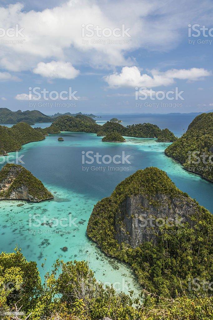 Scenic view of Wayag island in Rajaampat Indonesia stock photo