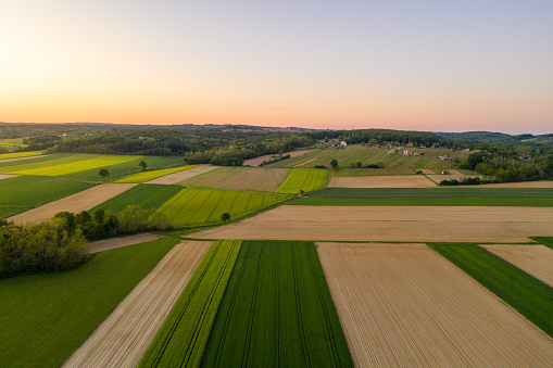 Aerial view of idyllic wheat field