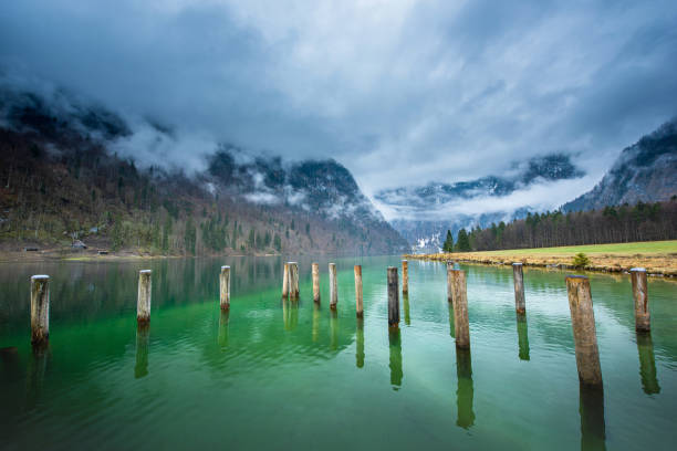 Scenic view of wooden poles in Königssee Lake, Germany in the cloudy day during summer Scenic view of wooden poles in Königssee Lake, Germany in the cloudy day during summer deem stock pictures, royalty-free photos & images