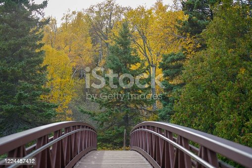 876420064 istock photo Scenic view on a bridge at Gooseberry Falls State Park in Autumn, vertical 1224487412