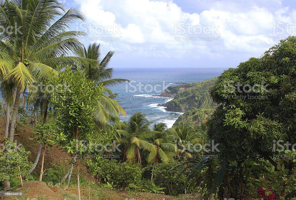 Scenic view to Atlantic Ocean coastline, Dominica, Caribbean islands stock photo