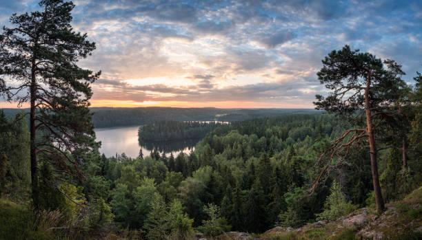호수와 국립 공원 ン, 하 민 리 나, 핀란드에서에서 여름 아침에 일몰 경치 보기 - 핀란드 뉴스 사진 이미지