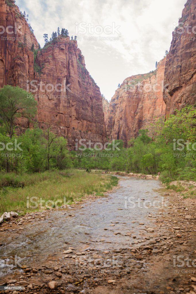 Scenic Virgin River Landscape in Canyon Zion National Park Utah - Royalty-free Awe Stock Photo