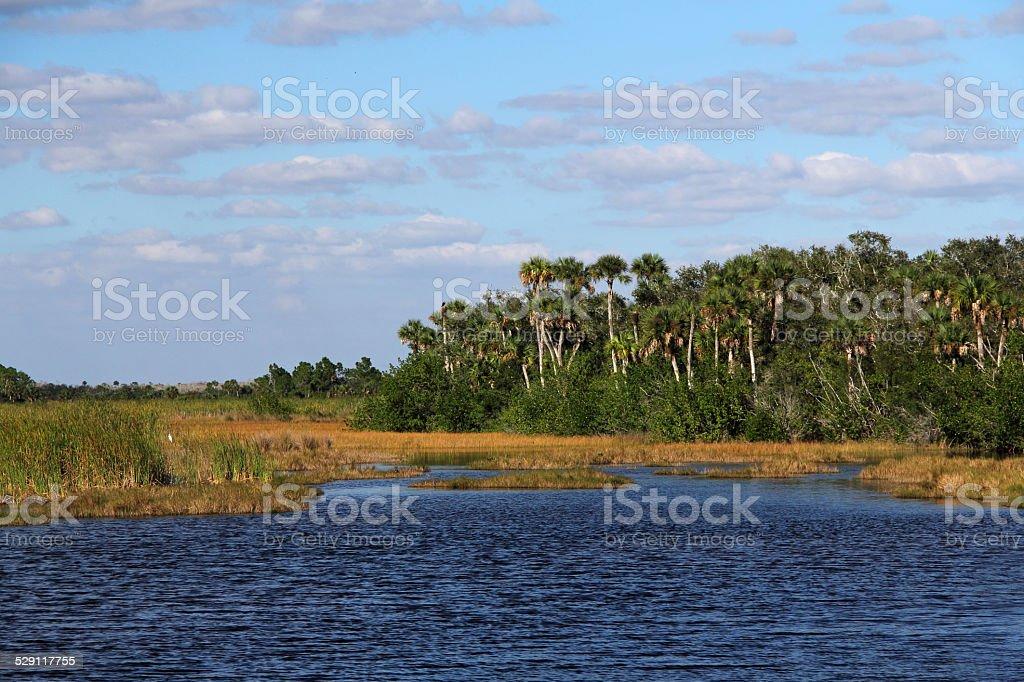 Scenic Wetlands stock photo
