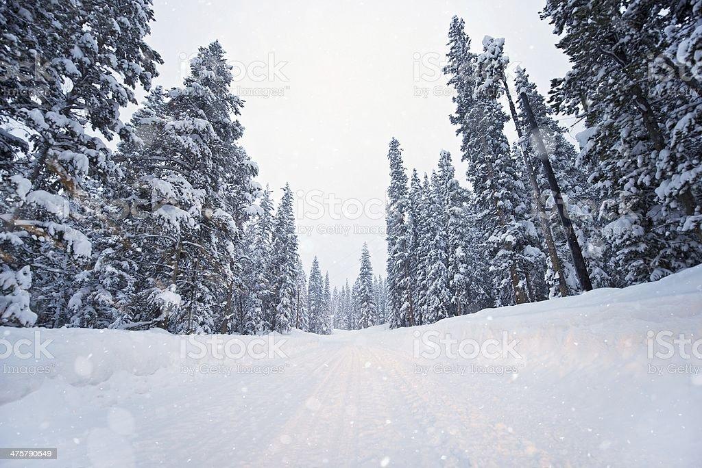 Malerische Winter Road – Foto