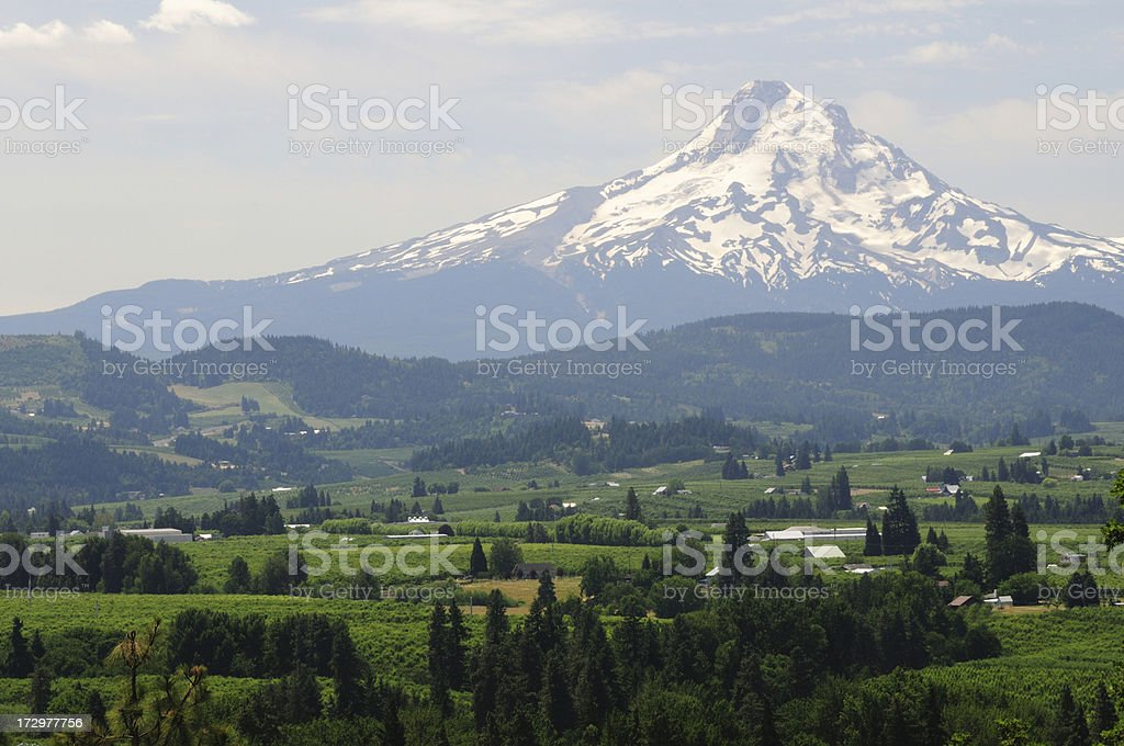 Scenics of Hood River Valley in Oregon stock photo