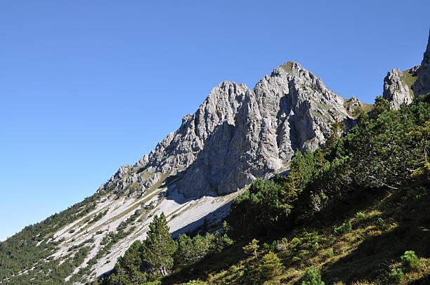 Schafnase, den Bergen in der Schweiz – Foto