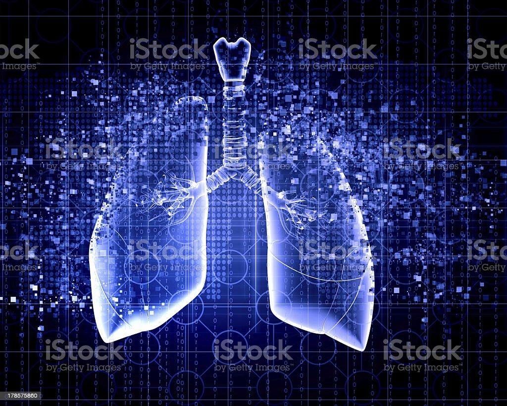 Schematic illustration Menschliche Lunge – Foto