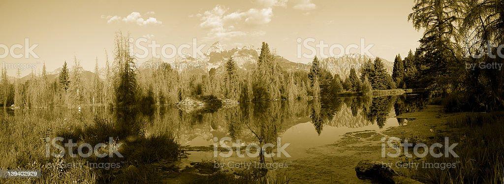 Schewbacher's Landing Sepia Panoramic royalty-free stock photo