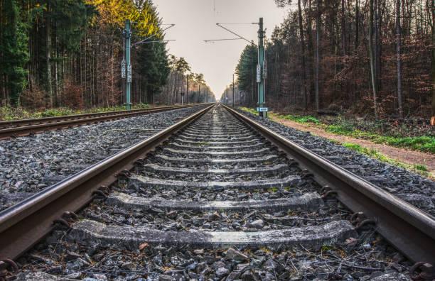 Schienen Blick auf Eisenbahnschienen auf einer Strecke durch den Wald; Aufnahme in HDR zug stock pictures, royalty-free photos & images