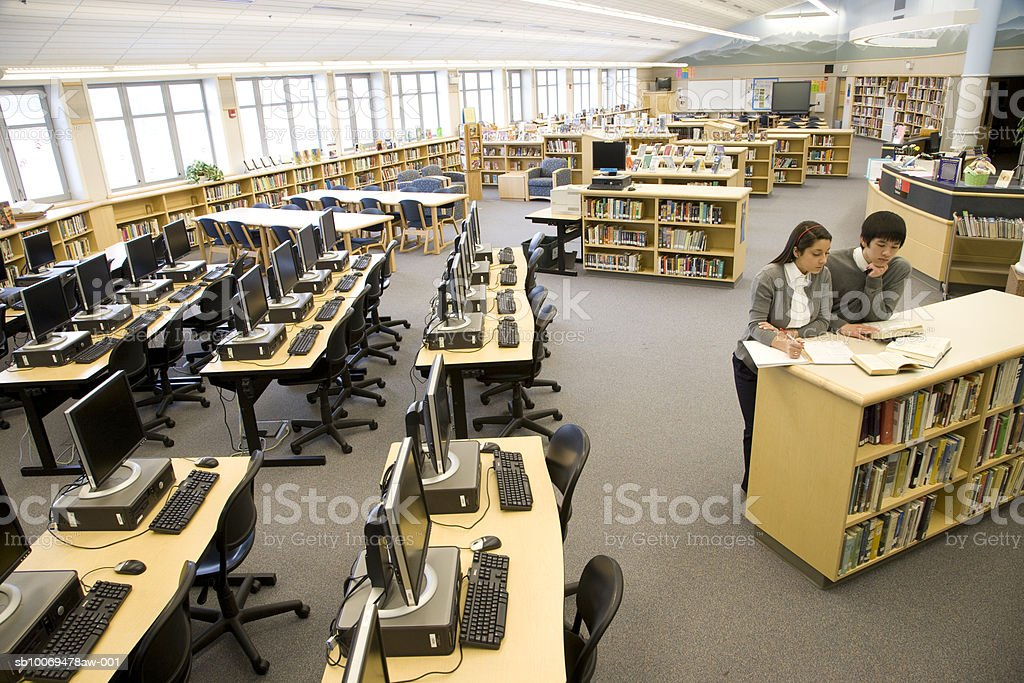 School boy and girl (16-17) studying in high school library royalty free stockfoto