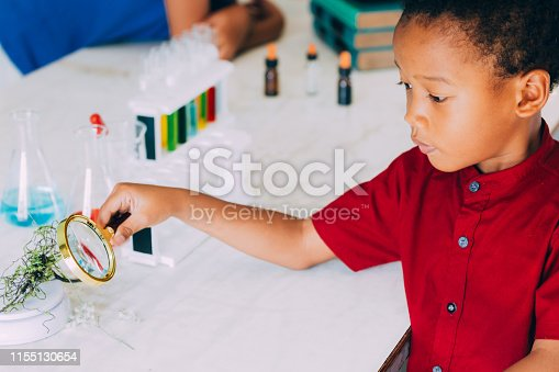 istock School boy using magnifier to test plant for scientific proof in science class - biology and ecology class concept 1155130654