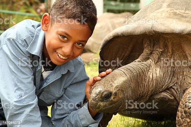 School boy visiting jonathan the giant tortoise on st helena picture id147044073?b=1&k=6&m=147044073&s=612x612&h=8bhhdvap6y3eovbp  gwh6q5fw2d7xqfvgb ydrfeaa=