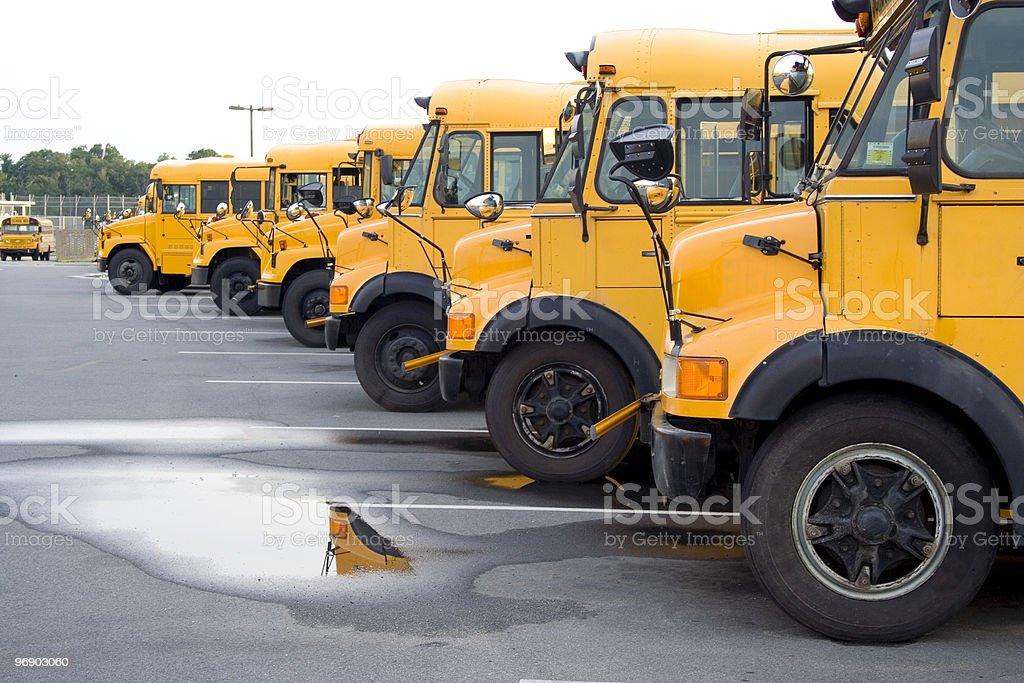 School bus fleet royalty-free stock photo